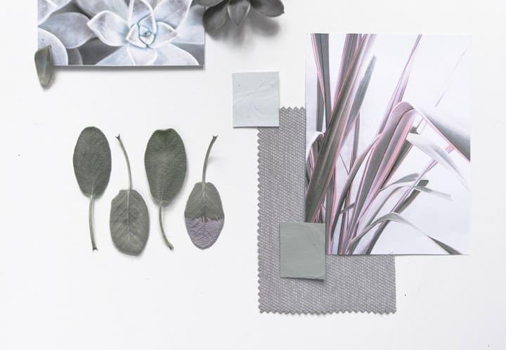 palette di colori Wilson&Morris moodboard succulente piante grasse interni casa