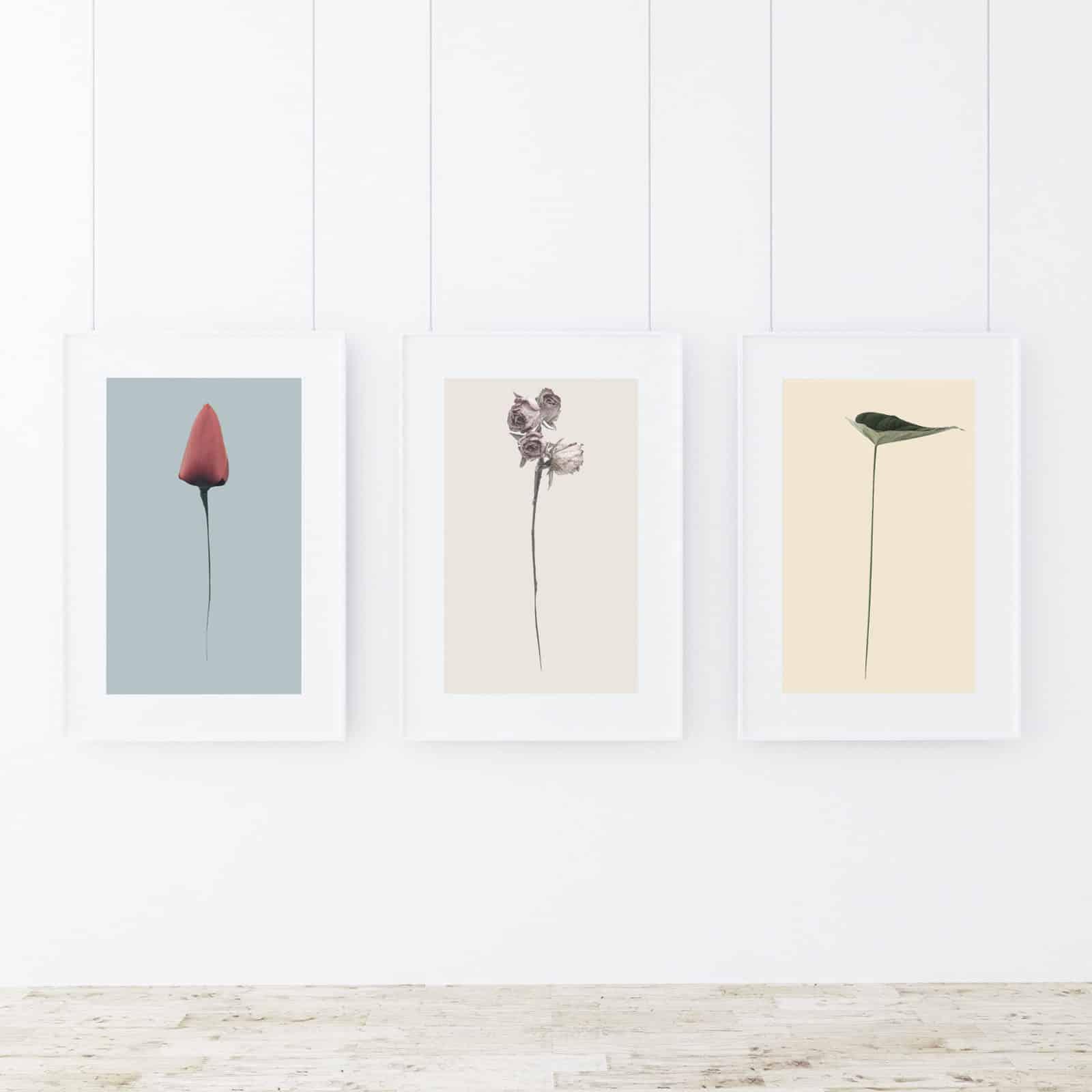 99regali regali di design Lyra Davide Buscaglia