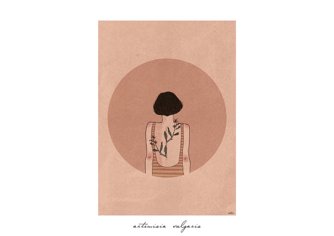 intervista a Malva illustrazioni torino flora