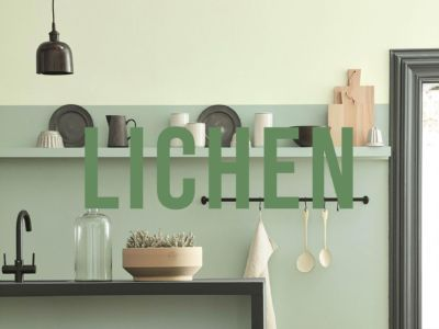 lichen green interior design