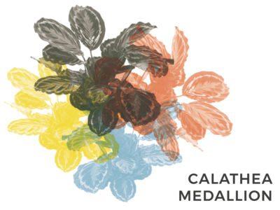 calathea medallion consigli e cure consigli d'interni pianta verde e viola