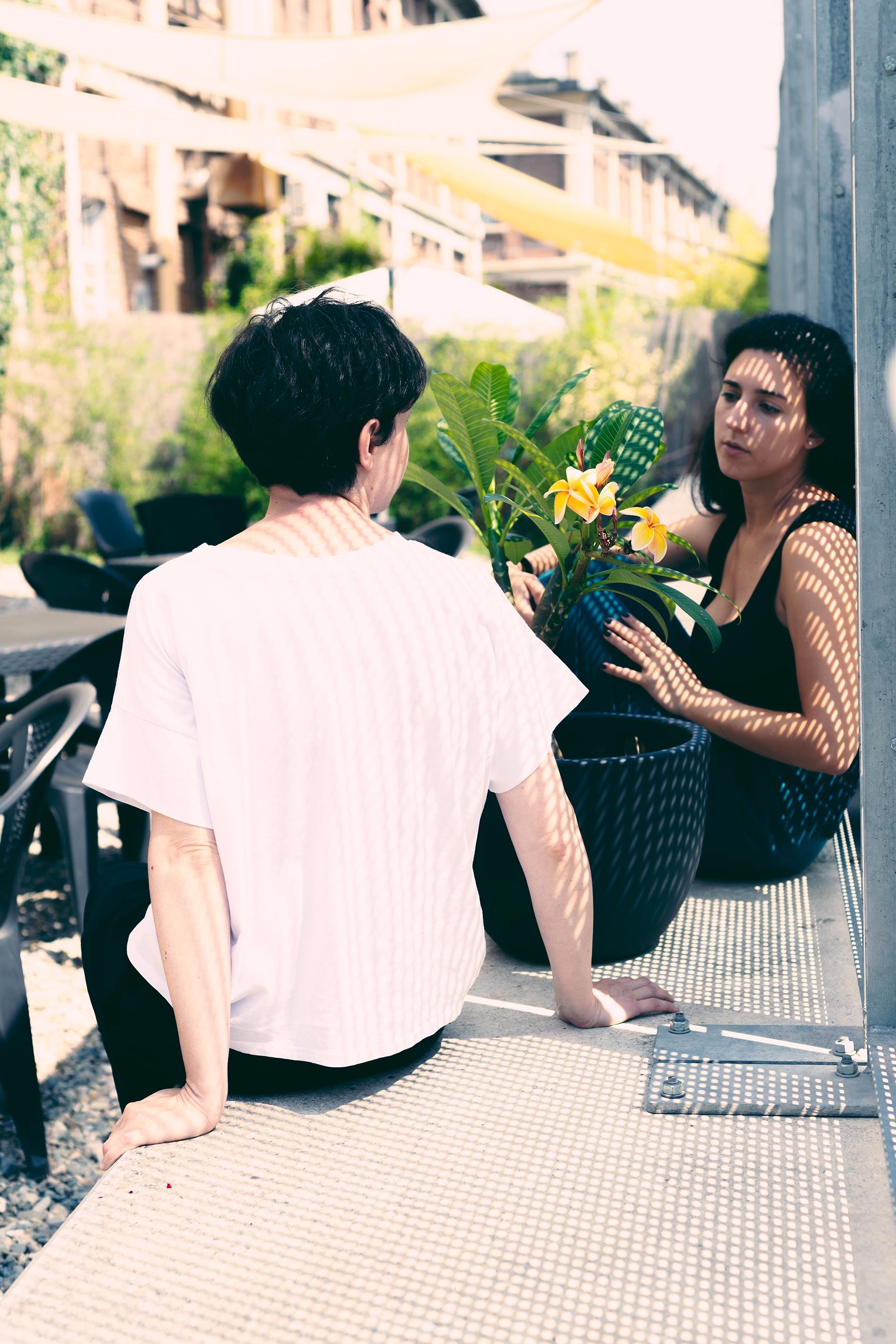chiacchiere e piante